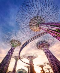 Foto van Supertree Grove in Singapore